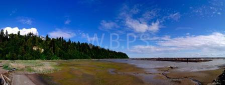 WB_Panorama1