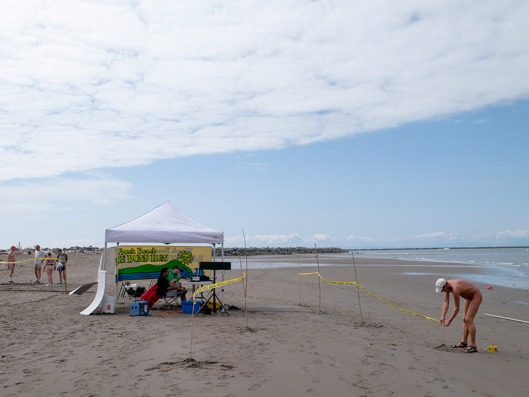Wreck Beach Bare Buns Run 2015 corse set up